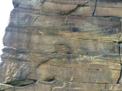 Sandstone Crossbedding in Yorkshire